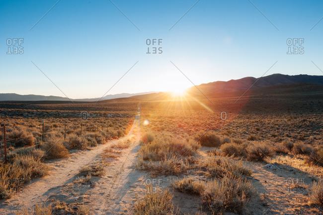 Dirt road in Nevada desert at sunset