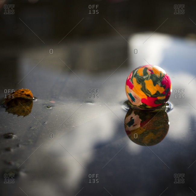 Close up of colorful ball in puddle