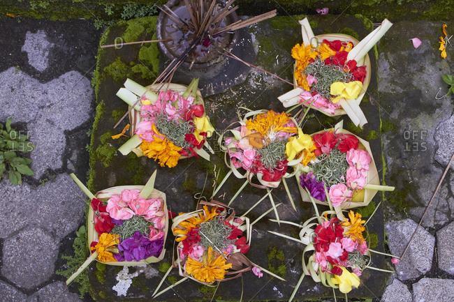 Close up of flower trays