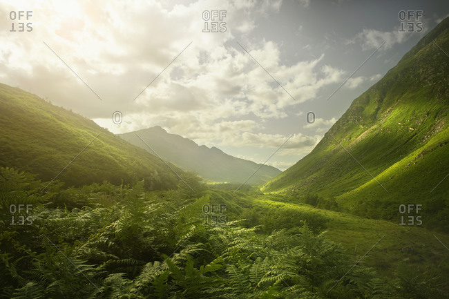 Rolling green hills in remote landscape