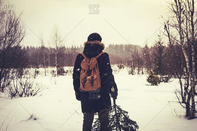 Rear view of a man carrying tree in snowy field