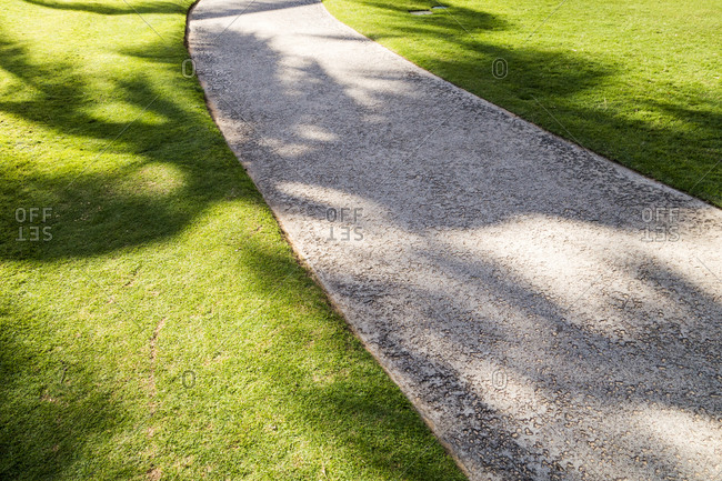 High angle view of palm tree shadows on concrete path