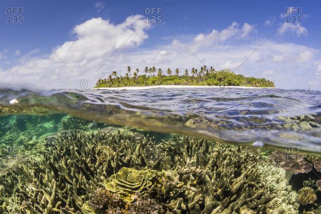 Sea coral and island, Indonesia