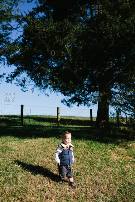 Little boy walking in a grassy field near a tree