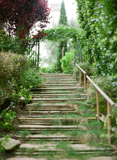 Wooden steps leading up to an arbor in a garden