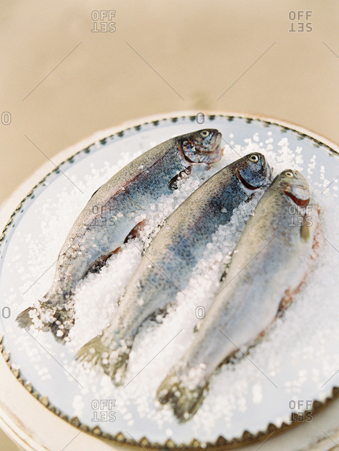 Three raw fish served on a bed of salt