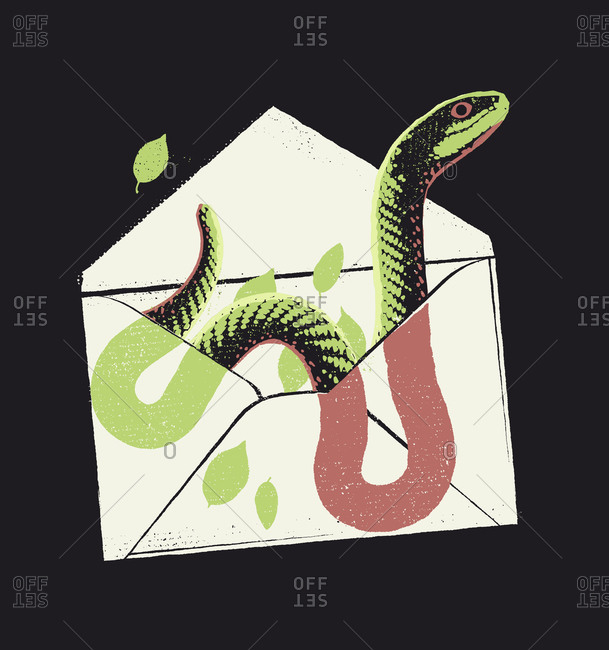 An open envelope with a snake and some leaves inside