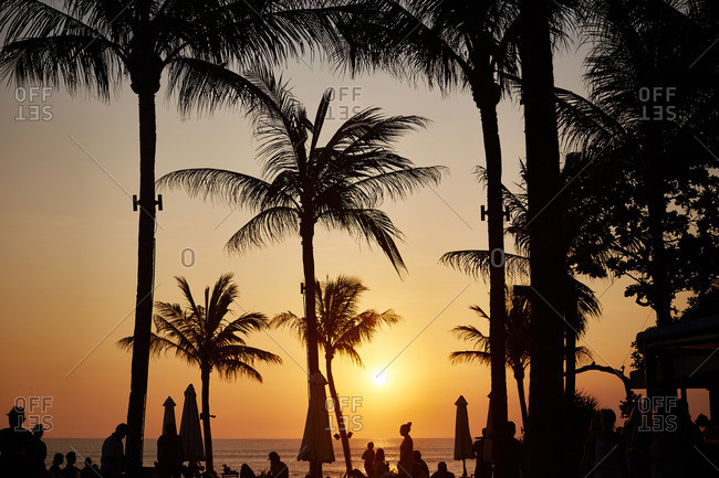 Palm trees and people silhouetted against a beach sunset
