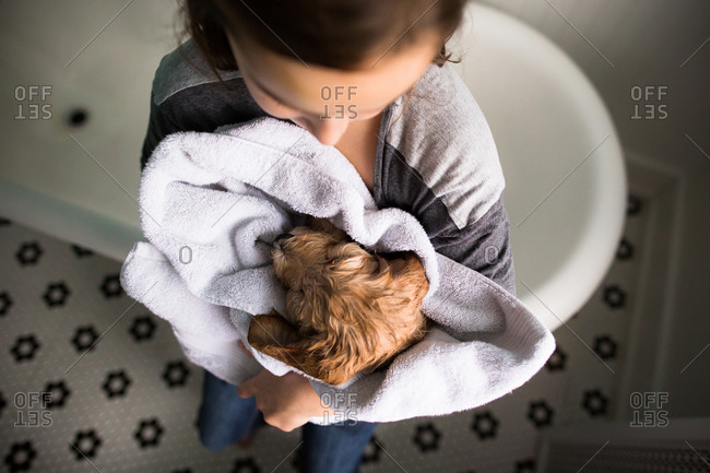 Girl holding freshly washed puppy