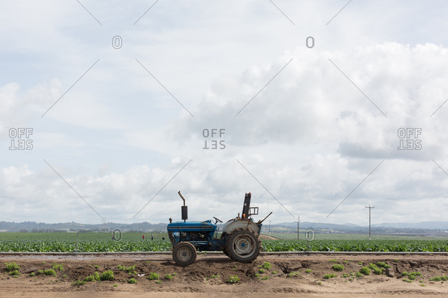 Unmanned tractor at the edge of a vast agricultural field