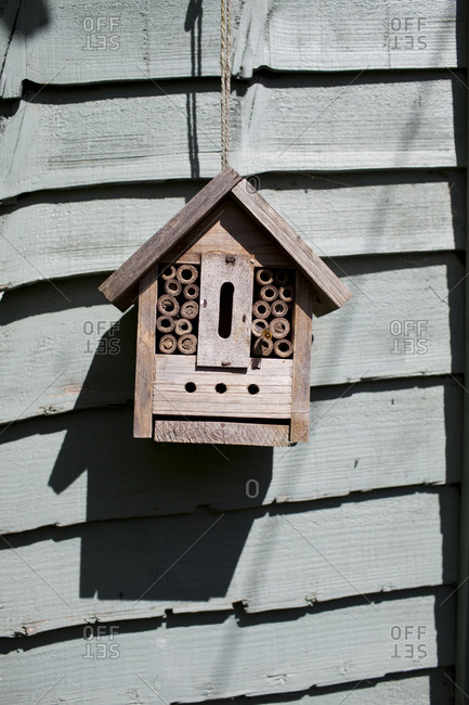 Close up of mason bee house on wall