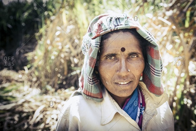 Bagalkot, Karnataka, India - November 28, 2014: Female sugarcane worker in India