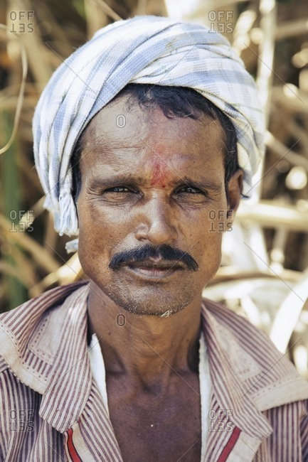 Bagalkot, Karnataka, India - November 28, 2014: Male sugarcane worker in India