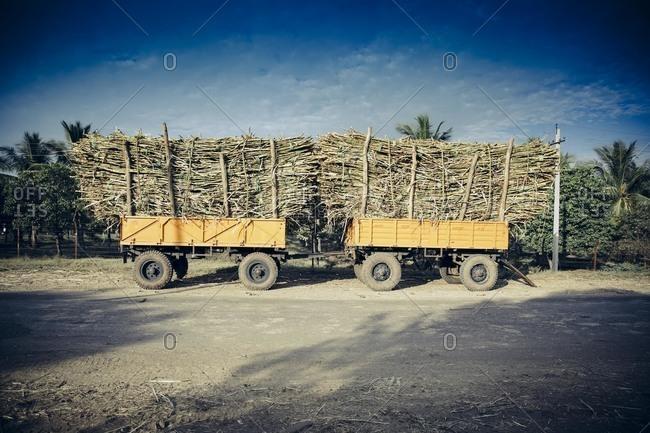 Tractors of sugarcane, India