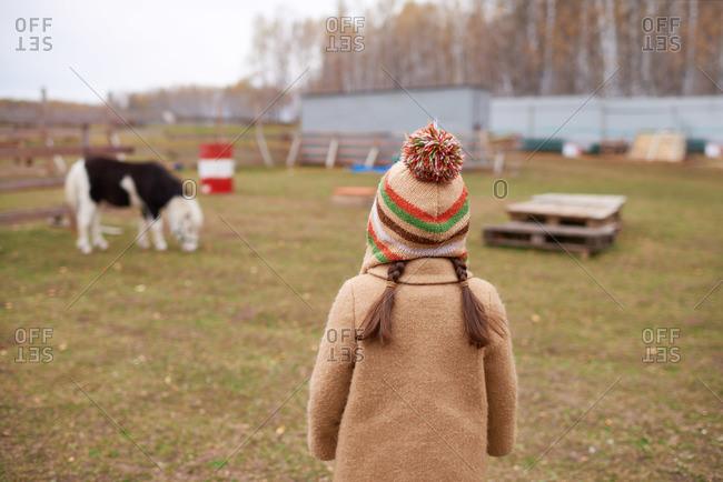 Girl in a winter overcoat watching small horse graze