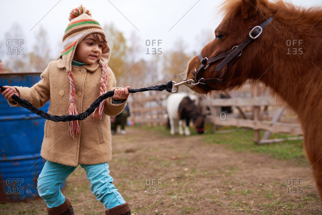 Girl in a winter overcoat pulling a pony by the bridle