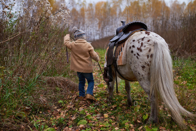 Girl in a winter overcoat leading a horse by the bridle through a wooded clearing