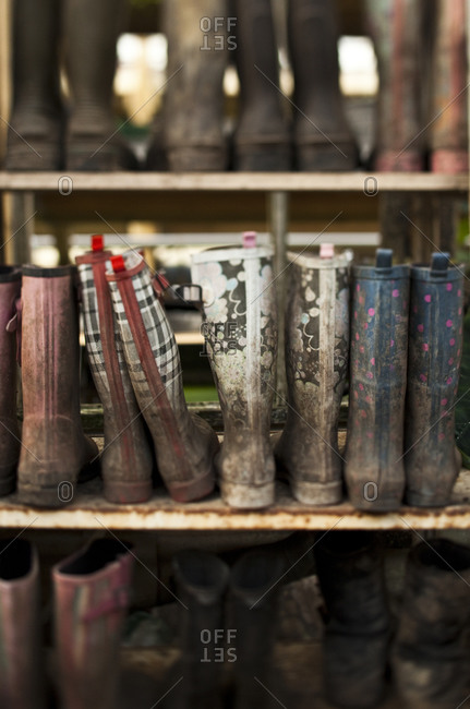 Muddy rubber boots arranged on shelves