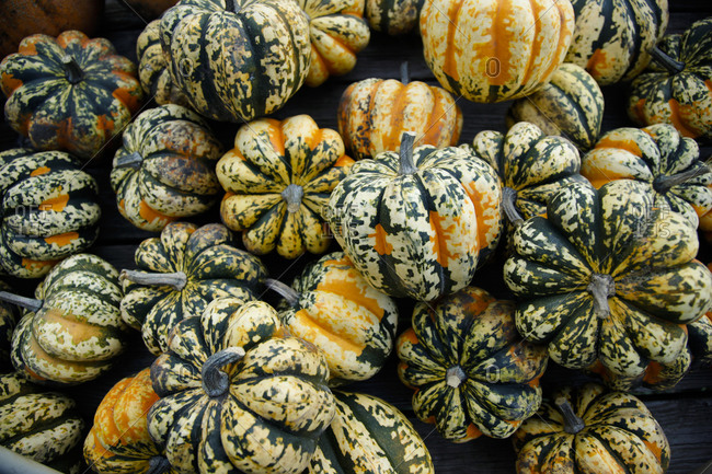 Green striped gourds