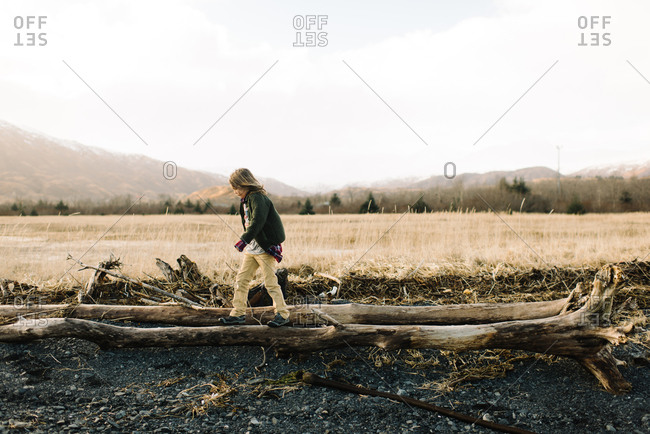 Boy walking across large fallen tree
