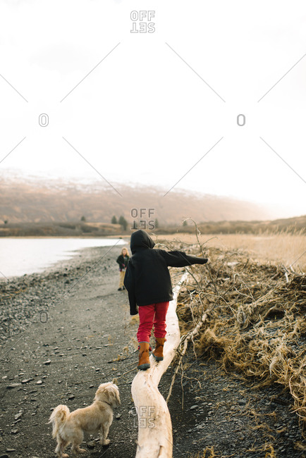 Boy walking across fallen tree