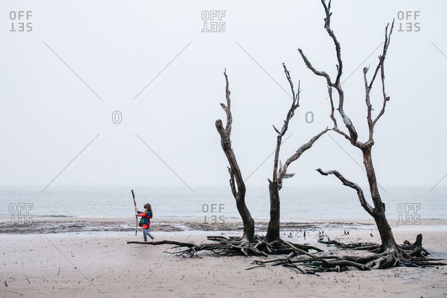 Little girl playing with drift wood on a beach