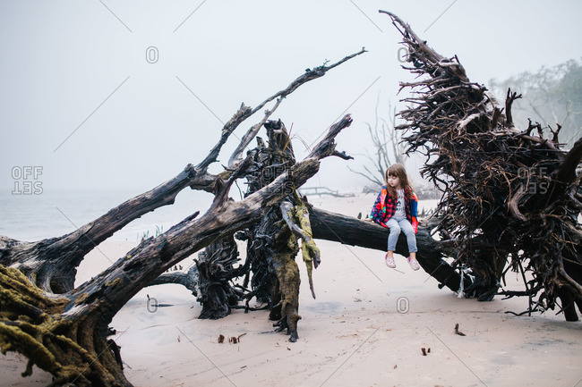 Little girl sitting on roots of a fallen tree