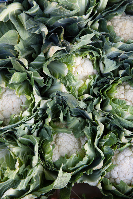 Overhead view of cauliflower