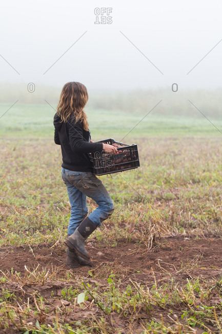 Woman walking through a field carrying a basket of potatoes