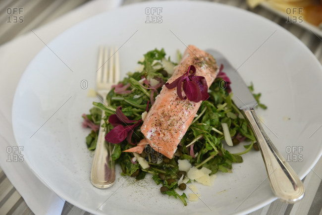 Salmon salad on a plate with a knife and fork