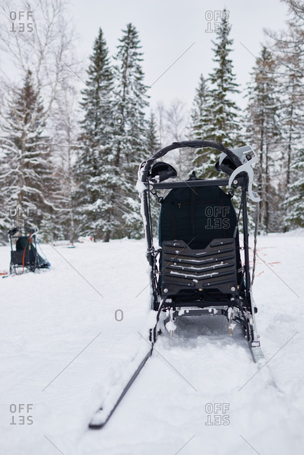 Empty dogsled in a snowy forest