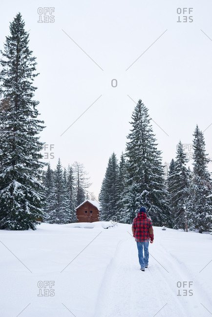 Man walking through a snowy forest toward a cabin