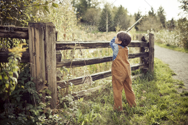 A young boy wearing overalls uses a tree branch to hit a plant, releasing seeds into the air