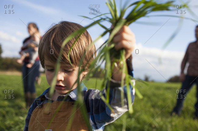 A young boy proudly holds up a handful of long green grass