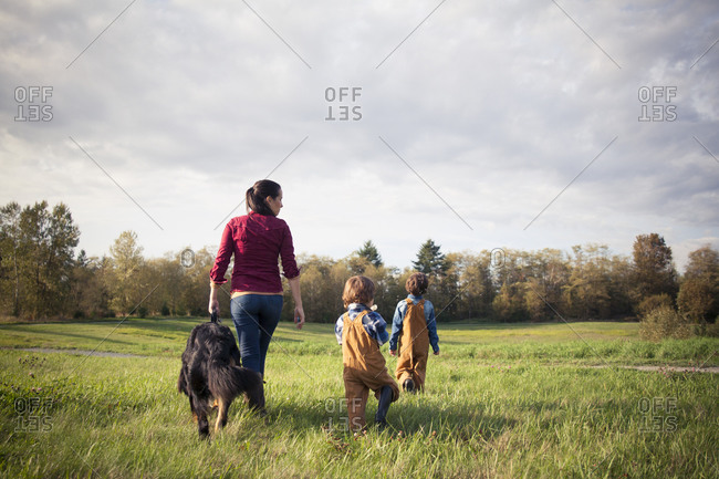 A mother walks through a grassy field with her two boys and Bernese Mountain Dog