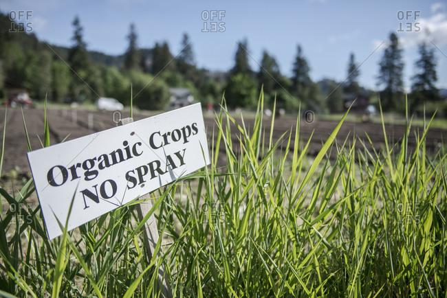 No spray sign at an organic farm in Washington State