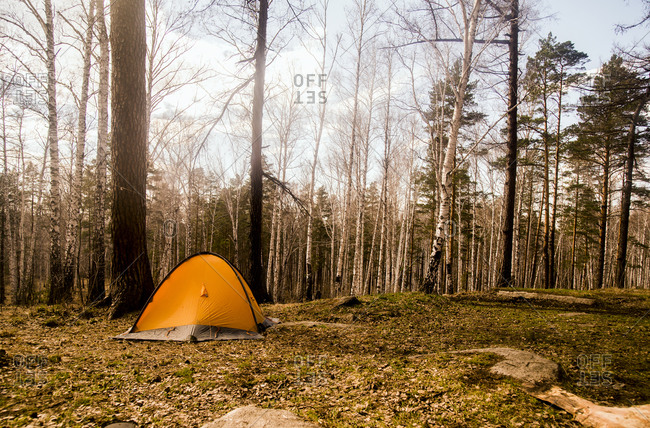 Tent at campsite in rural forest