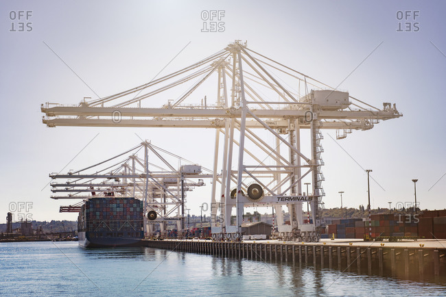 Shipping cranes and cargo ship in a port
