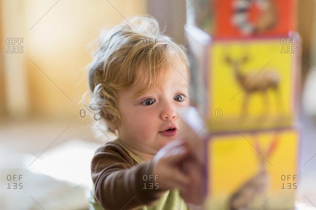 Baby boy stacking colorful blocks