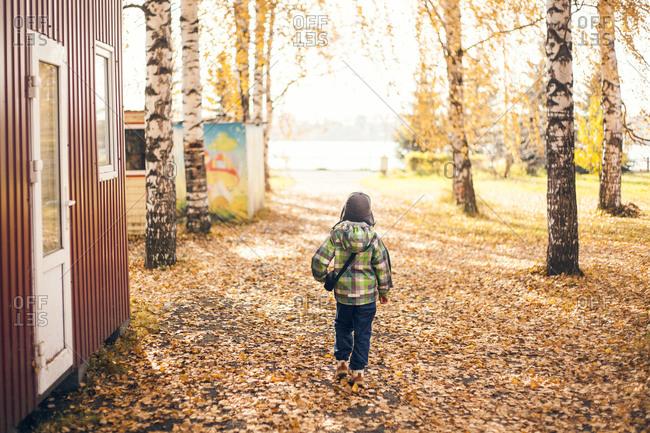 Boy walking in autumn leaves