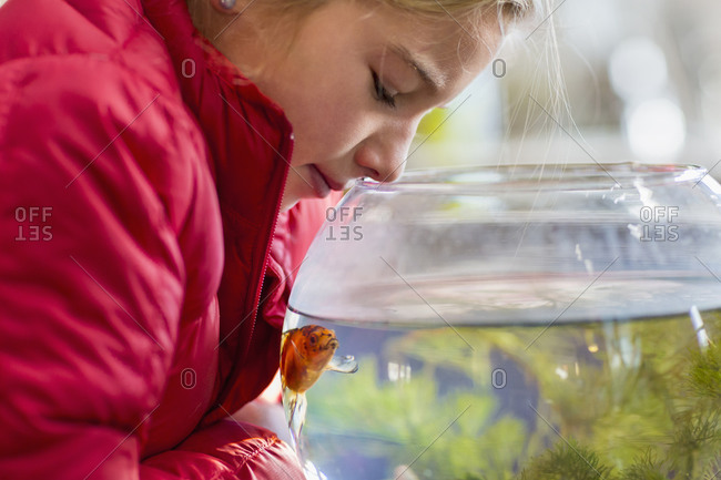Girl examining goldfish in bowl
