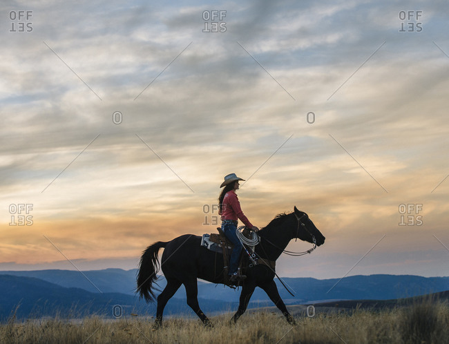Woman riding horse in grassy field