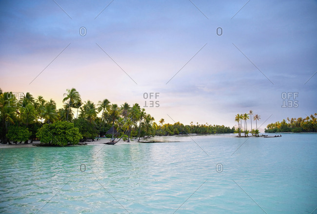 Palm trees lining tropical ocean