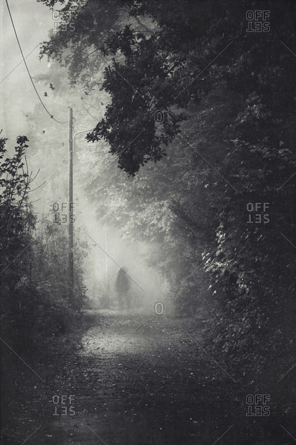Silhouette of a man on path during fog
