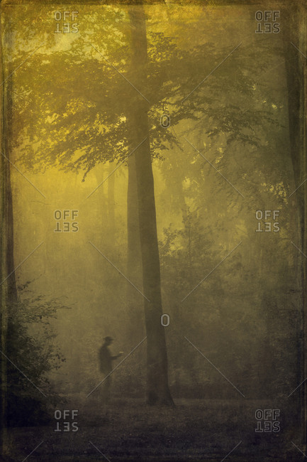 Man during fog in forest