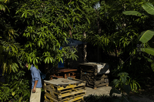Man peaking out from a grove of trees next to a stack of wood pallets