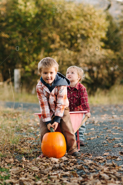 Two toddler boys with pumpkin and wheelbarrow