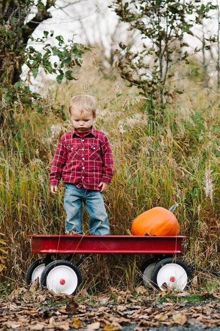 Portrait of a toddler boy standing with a pumpkin in a red wagon
