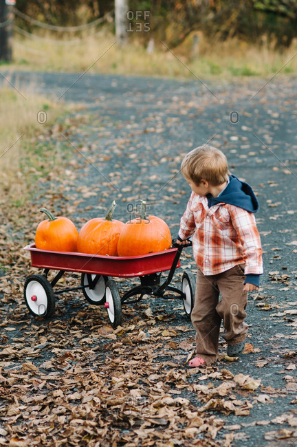 Toddler boy pulls a red wagon containing three pumpkins