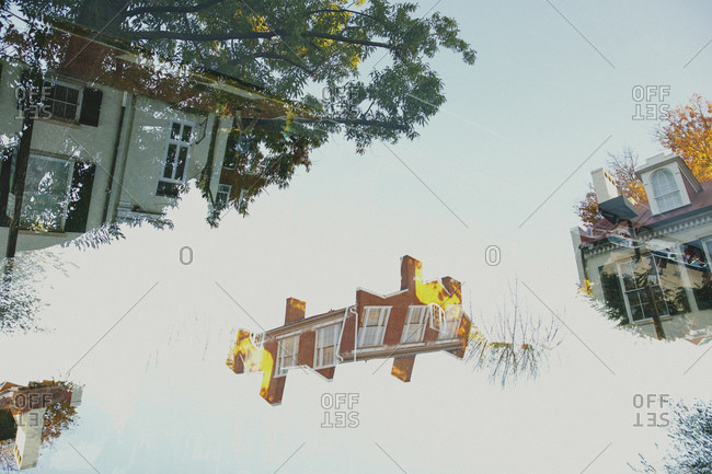 Double exposure of apartments and trees